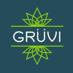 Get Gruvi Logo
